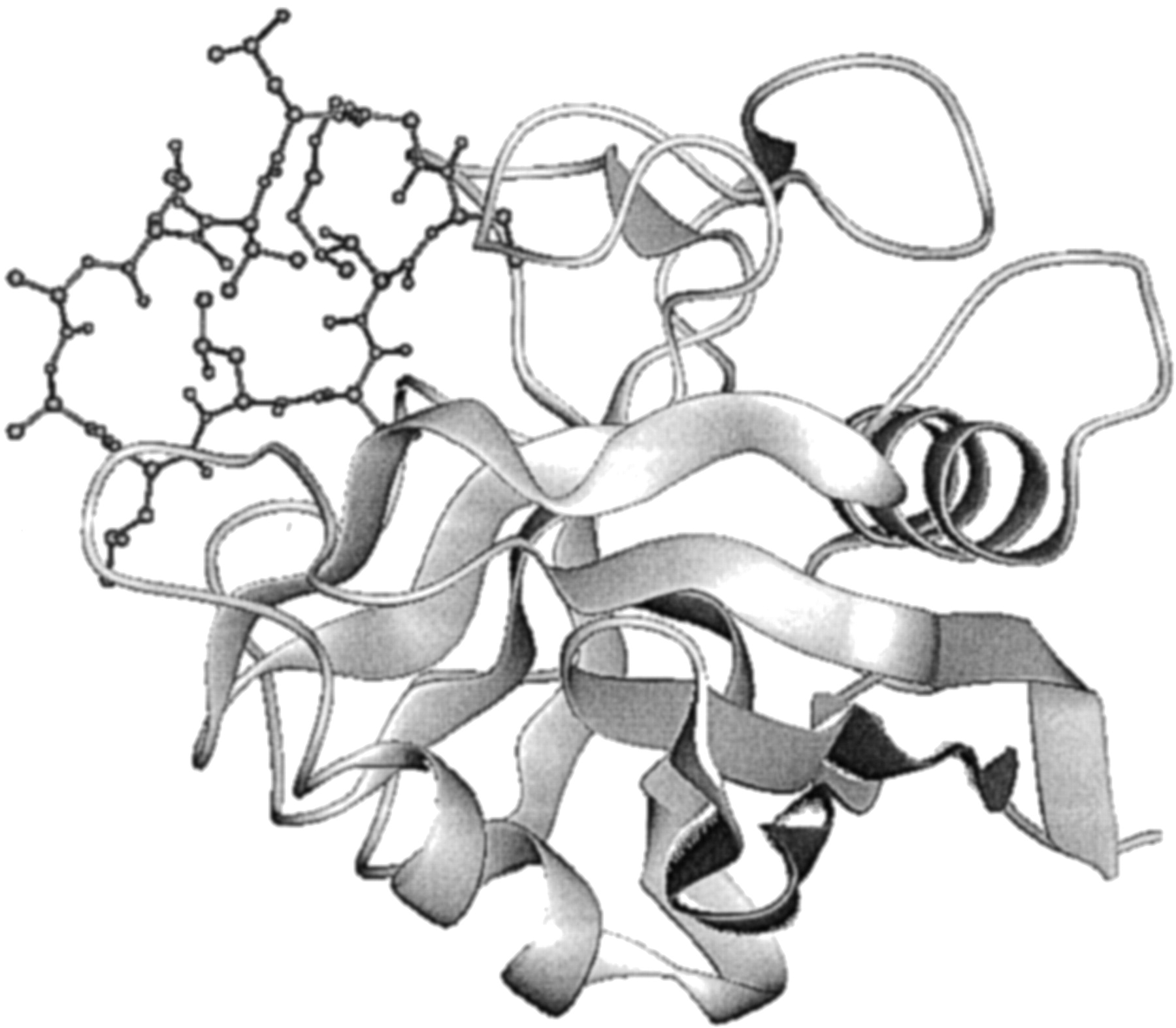 Ligand-Binding Proteins: Their Potential for Application in