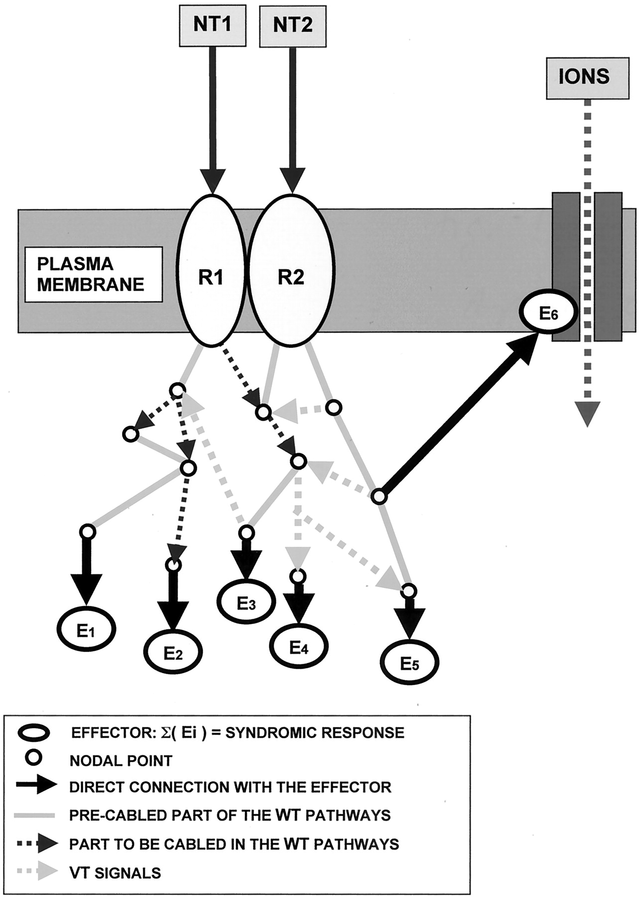 Molecular Mechanisms And Therapeutical Implications Of Intramembrane The Wiring For This Is Pretty Straightforward Some Items Xm Download Figure