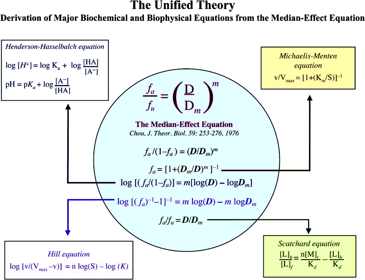 Theoretical Basis, Experimental Design, and Computerized