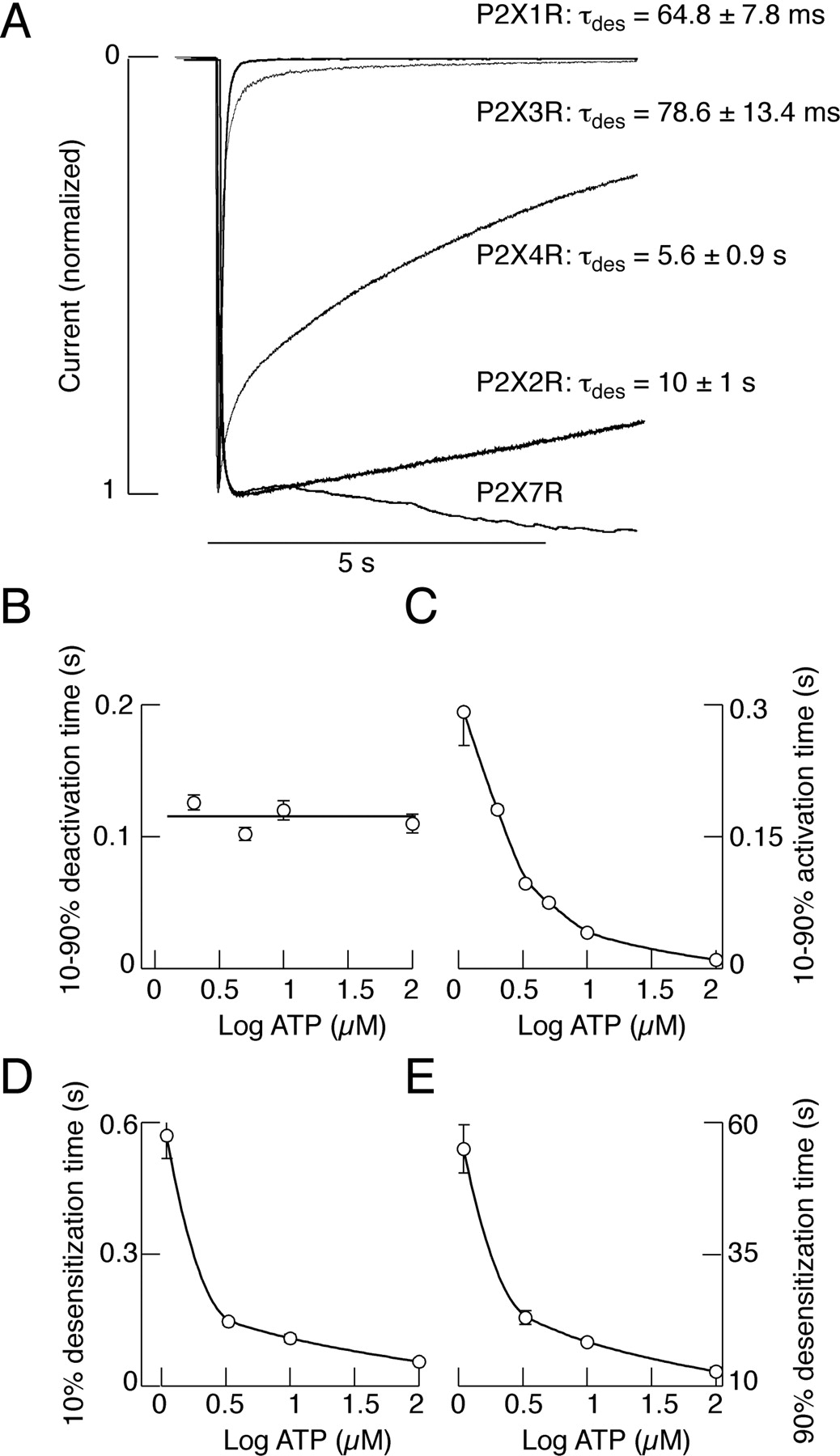 Activation And Regulation Of Purinergic P2x Receptor Channels Ford Fusion V6 3 0 Fuse 48 Diagram Download Figure Open In New Tab