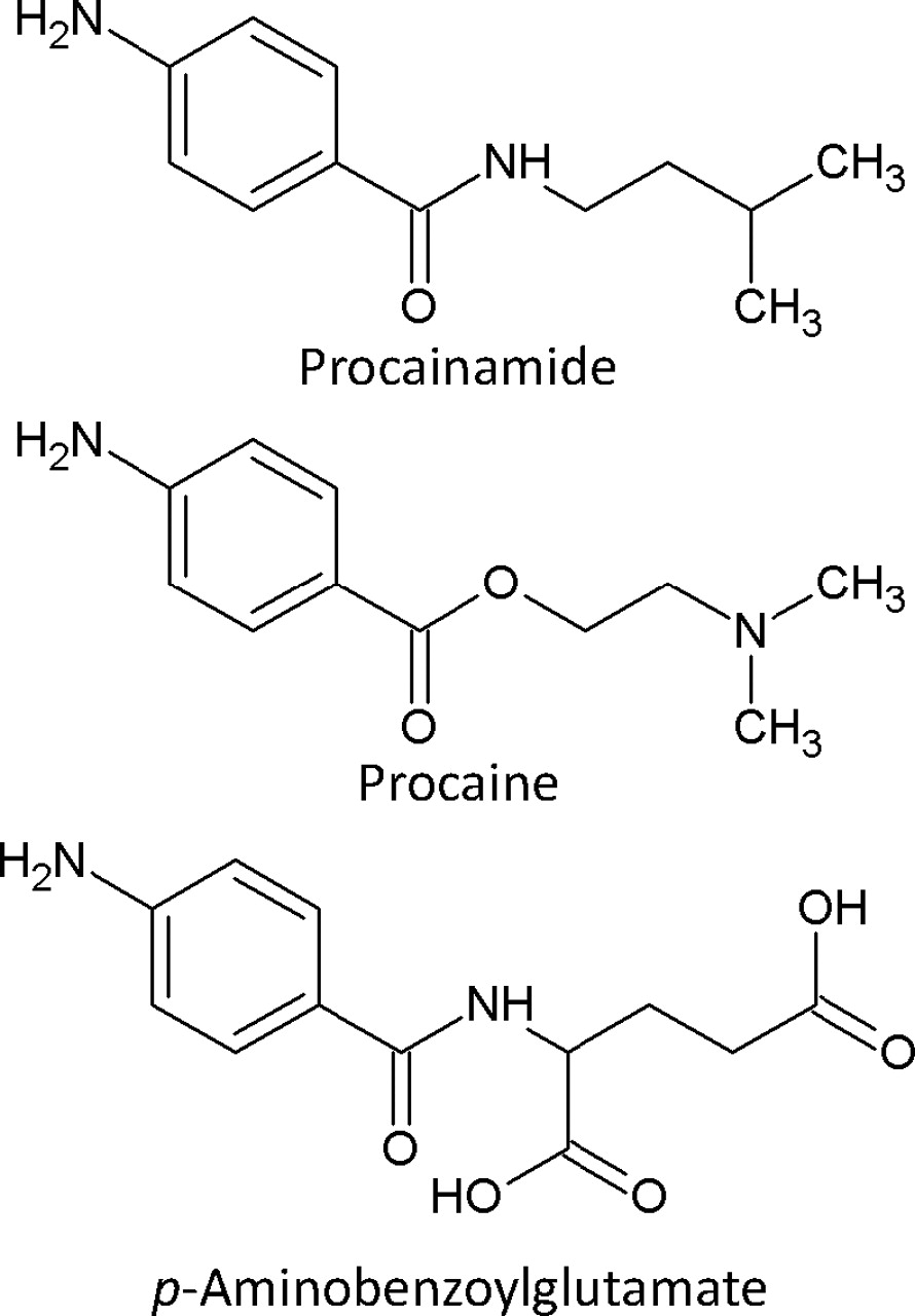 Procainamide Reviews