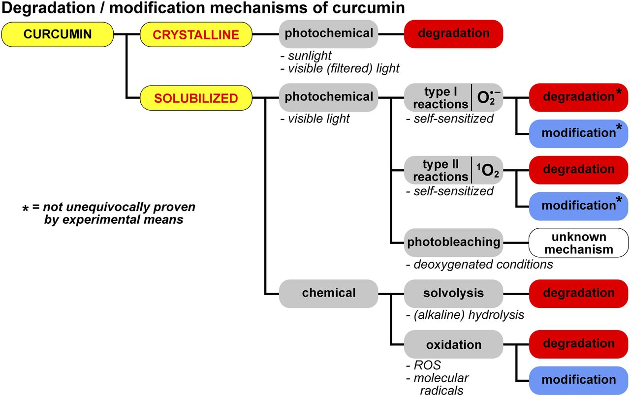 The Molecular Basis for the Pharmacokinetics and