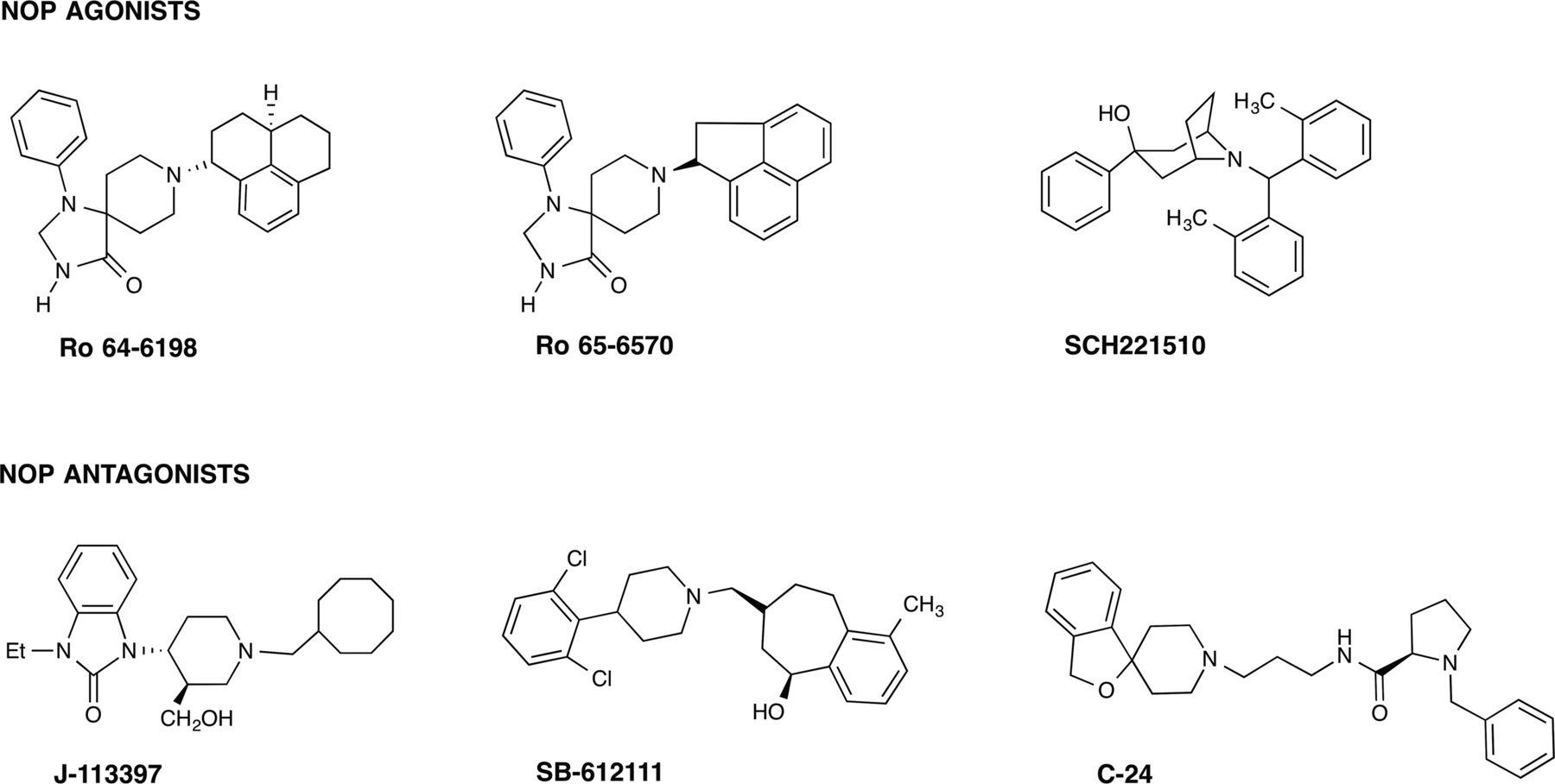 nociceptin  orphanin fq receptor structure  signaling