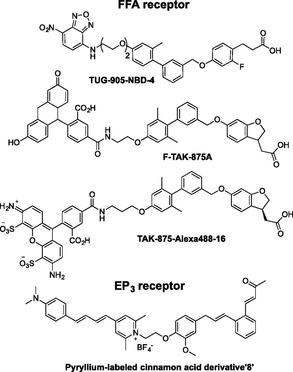 Chemical Tools for Studying Lipid-Binding Class A G Protein