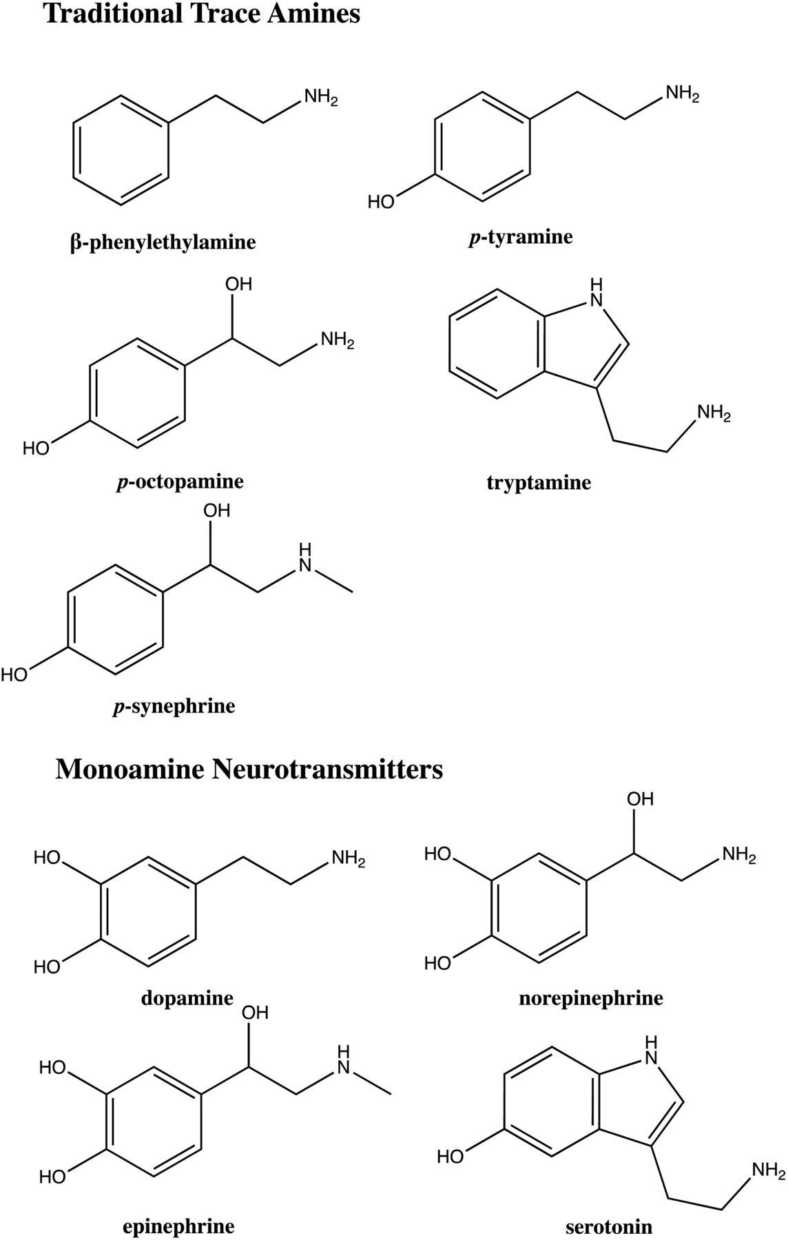 Andrea Suwa trace amines and their receptors   pharmacological reviews