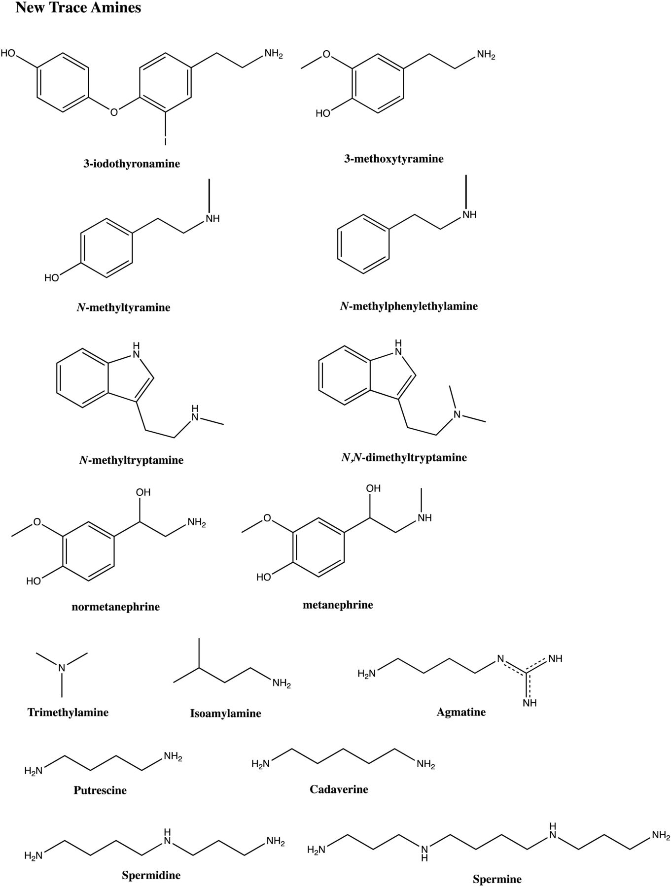 Trace Amines and Their Receptors | Pharmacological Reviews
